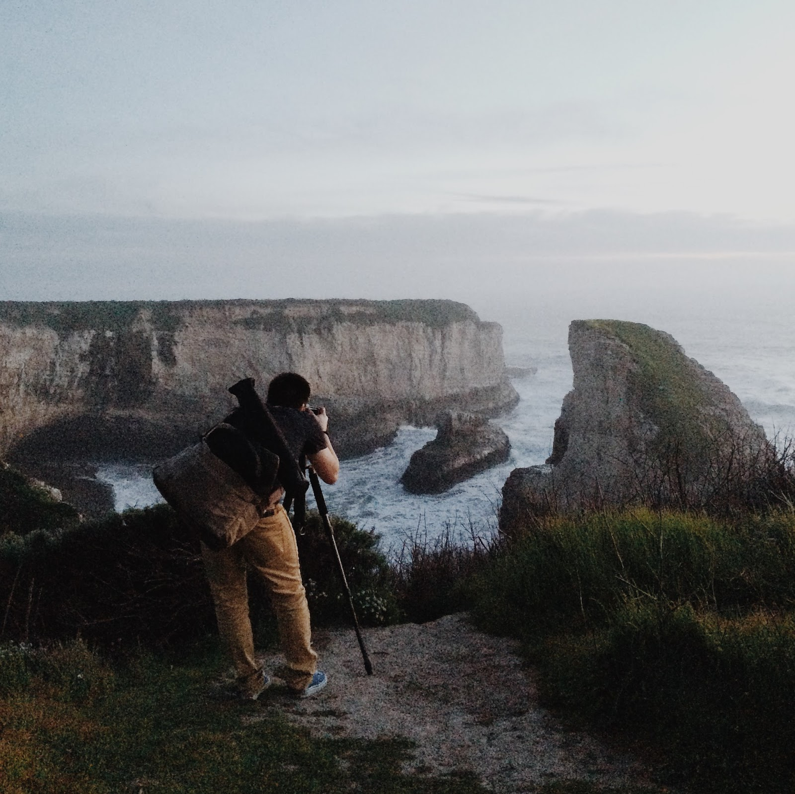 Shark Fin Cove iPhone 5s
