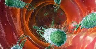 gejala dan tanda sipilis gejala sipilis dan tanda tanda dan gejala terkena sipilis gejala dan tanda sifilis gejala dan tanda penyakit sipilis gejala dan tanda penyakit sifilis tanda dan gejala sipilis pada wanita tanda dan gejala sipilis pada pria tanda dan gejala penyakit sipilis pada wanita