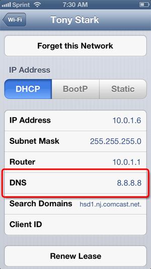 Set Custom DNS