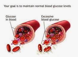 Obat Alami Untuk Penyakit Gula Darah