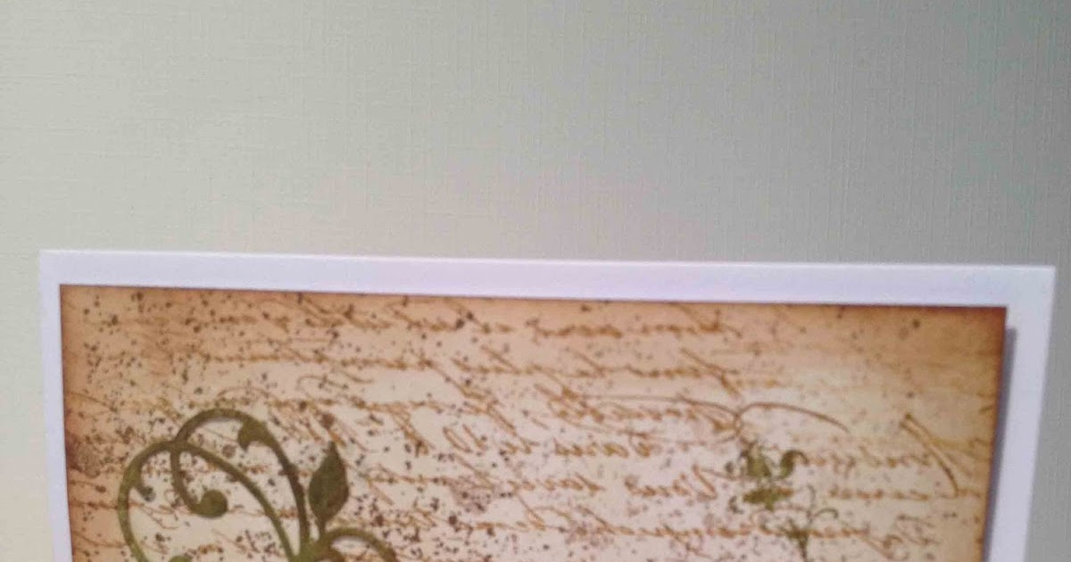 marianne louise bird builder su. Black Bedroom Furniture Sets. Home Design Ideas