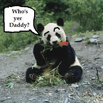 Sperm harvesting panda galleries 894
