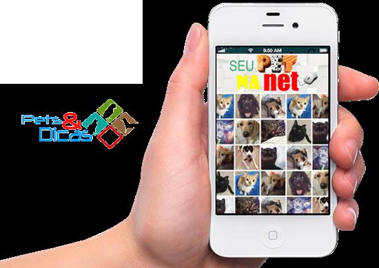 Seu PET na rede