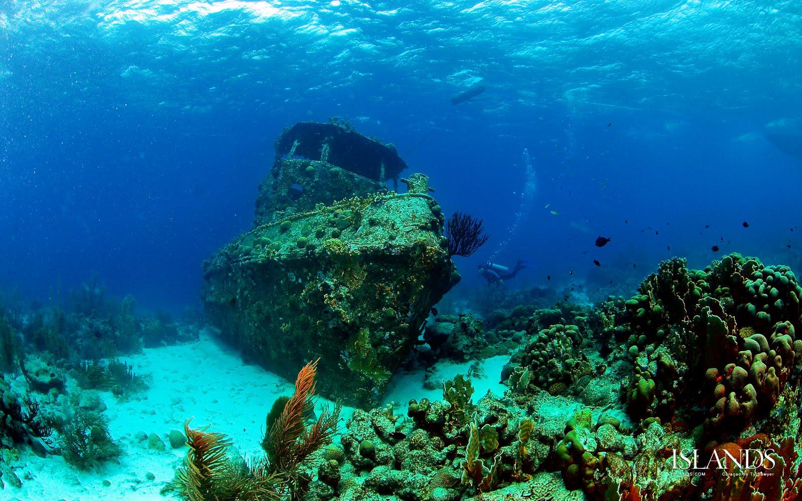 http://1.bp.blogspot.com/-brNN3-9uR6s/TmZXgrlOecI/AAAAAAAAGyQ/60ltoO9UrE8/s1600/Curacao_Wreck_Diving_Wallpaper_1920x1200.jpg