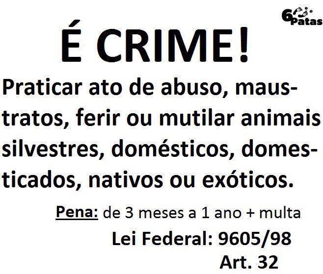 É crime,È lei e da PRISÃO!
