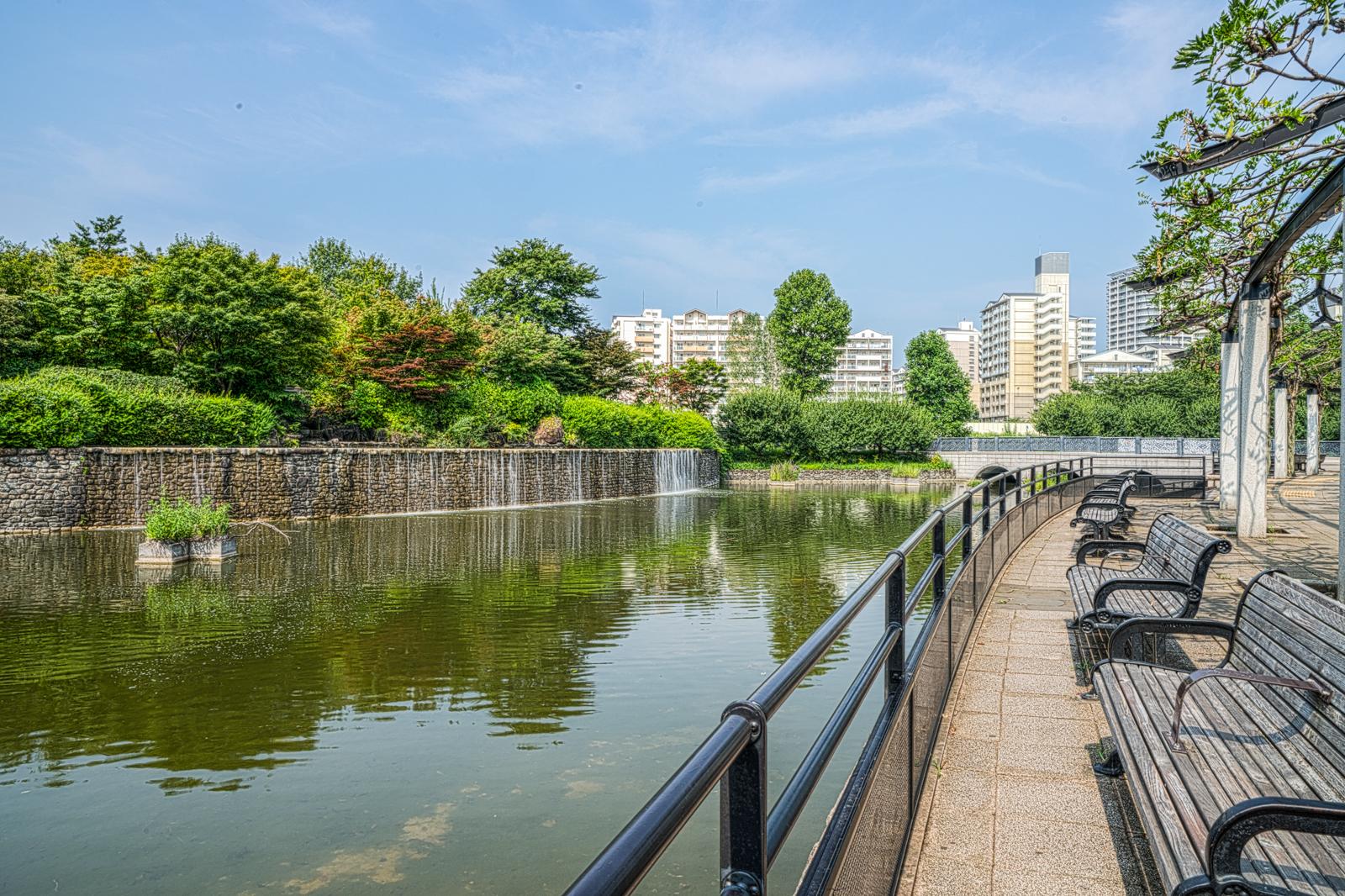 武蔵国分寺公園の滝を見渡せるベンチの写真