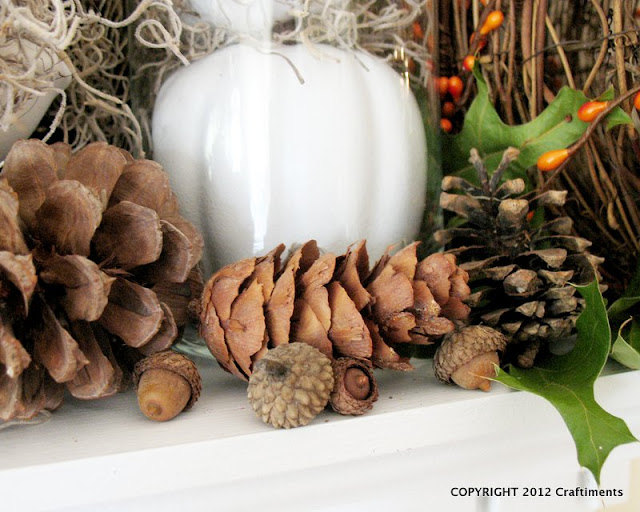 Craftiments:  Closeup of pinecones and acorns