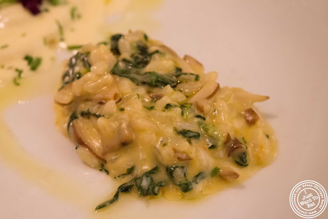 image of risotto at Incognito Bistro in NYC, New York