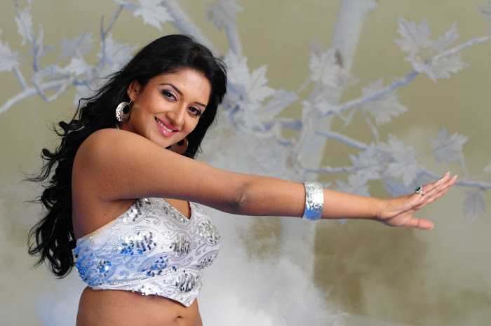 vimala raman new hot photoshoot