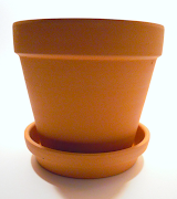 The pot measures about 25 cm (10 inches) high, and has a diameter of about .