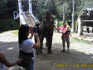 ChiangMai Tour With Local ChiangMai Tour Guide On NOV 10 to 11 , 2013