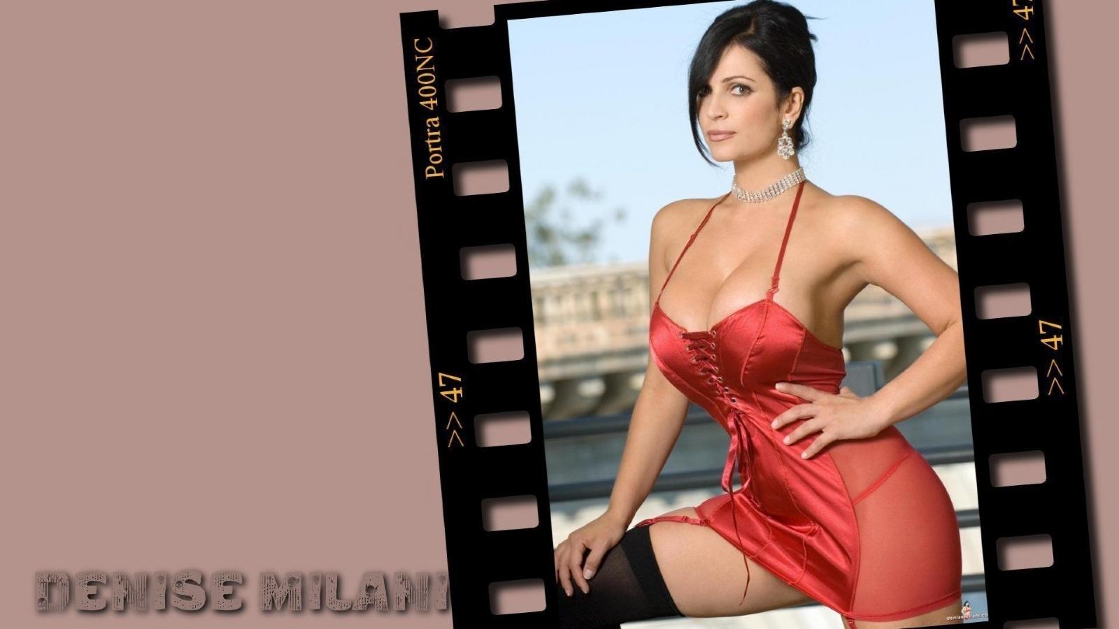 hot denise milani wallpapers hd entertainment pics