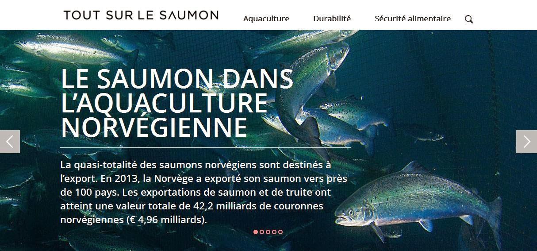 http://www.toutsurlesaumon.fr/