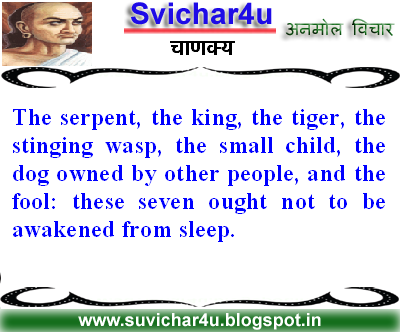 The serpent, the king, the tiger, the stinging wasp, the small child, the dog owned by other people, and the fool; these seven ought not to be awakened from sleep.