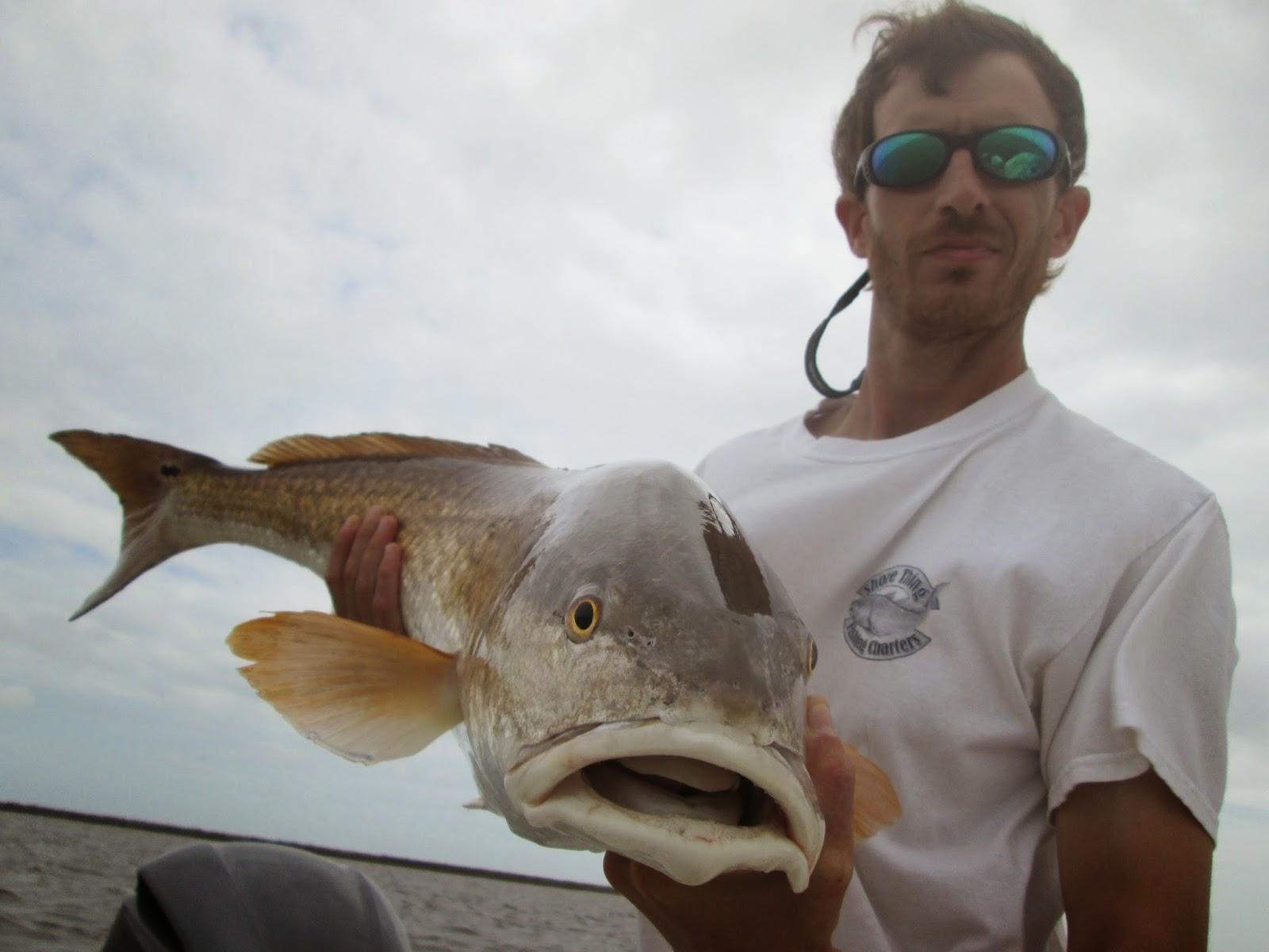 Big fish small fish lotta fish and a lotta cool stuff for Cool fishing stuff
