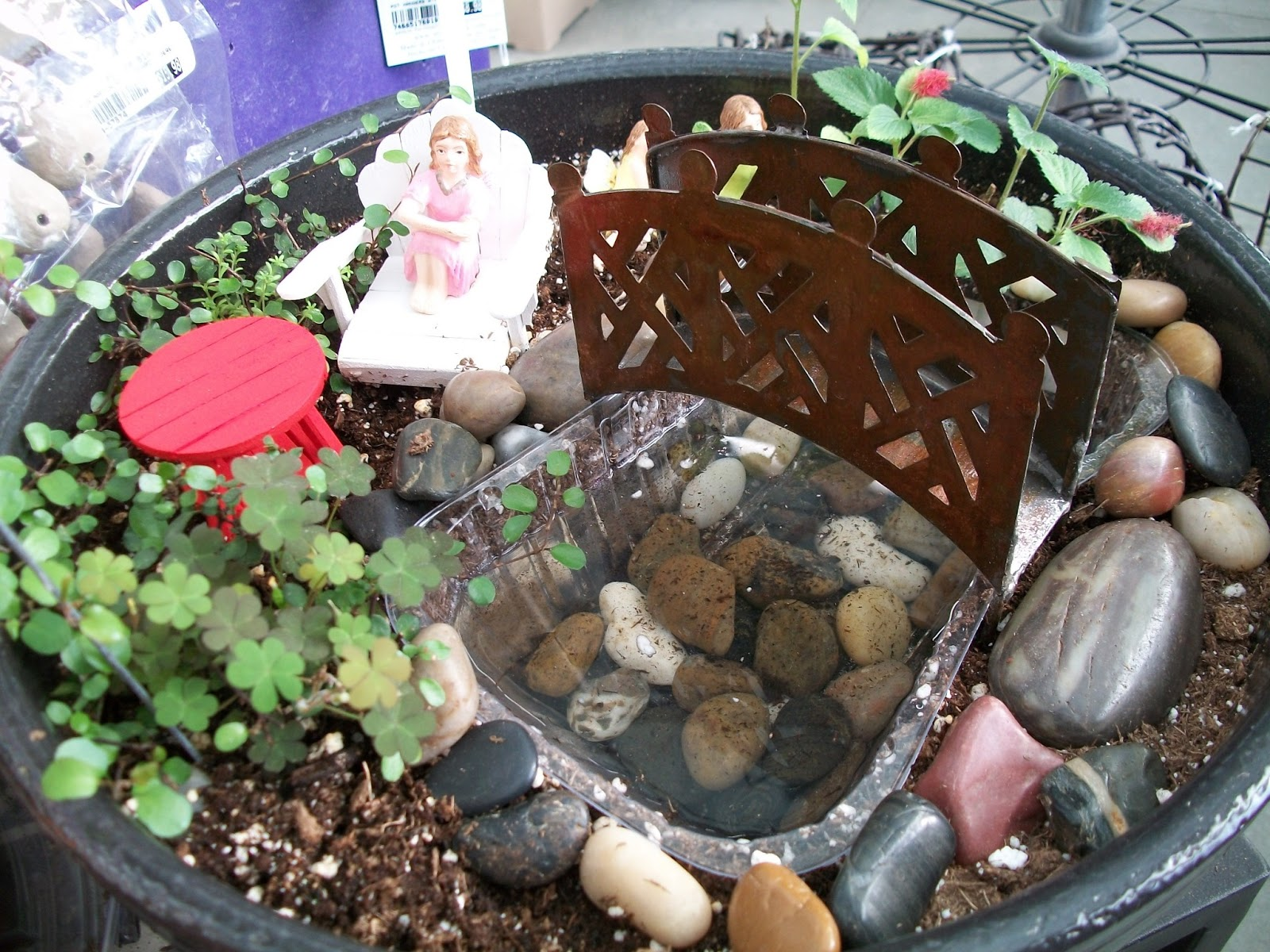 The Flower Bin Fairy Gardens