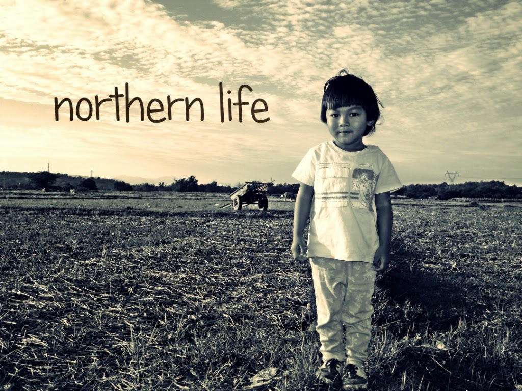 Northern Life
