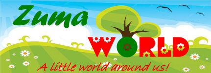 Zuma World
