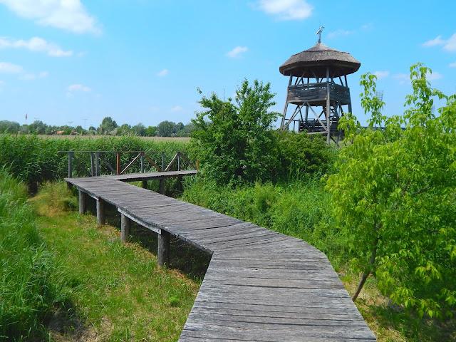 Madármegfigyelő torony a Sóstó tanösvényen