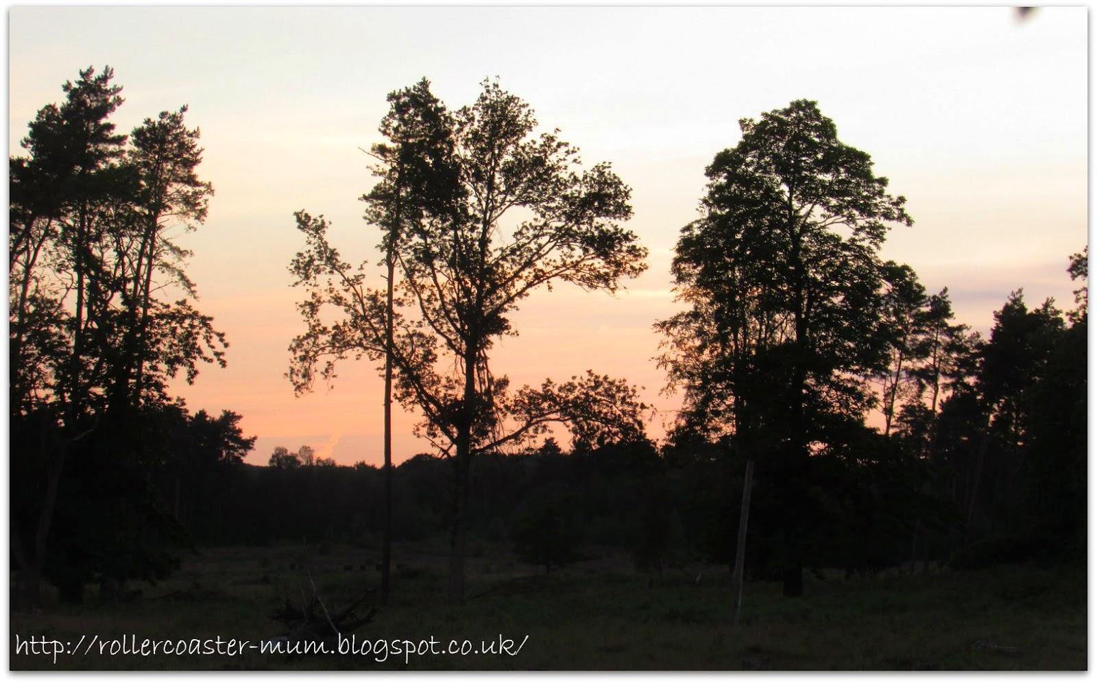 sunset over the heath, RSPB Big Wild Sleep Out