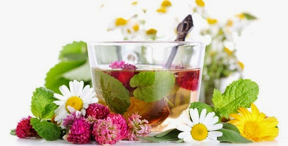 Tratament cu plante medicinale pentru foamea nervoasa si circulatia defectuoasa