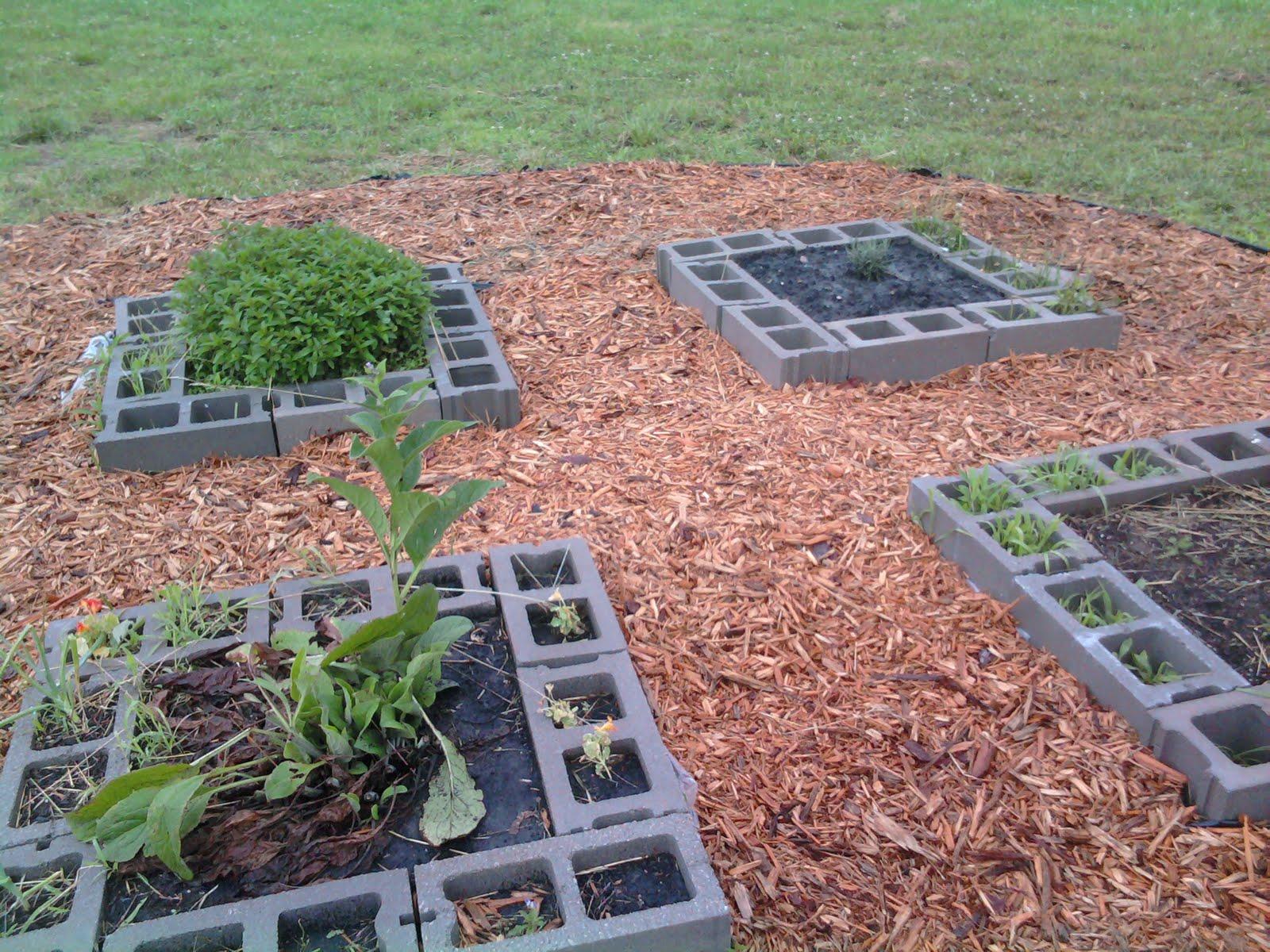 Cinder Block Raised Bed Herb Garden