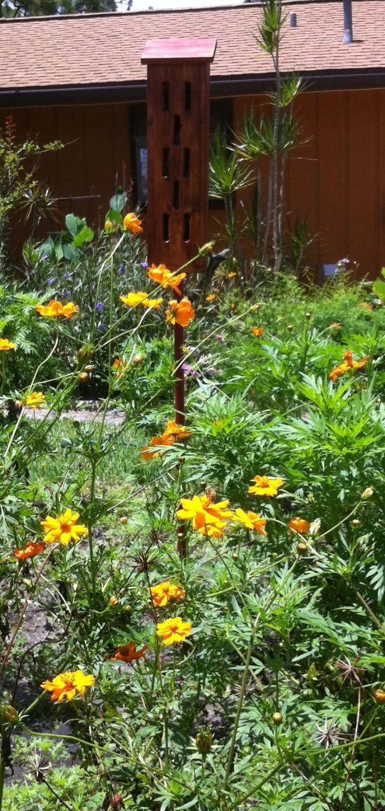 Paulaexuks Blog Garden Art Butterfly Butterfly Feeder