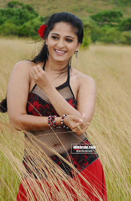 Anushka Hot Navel Stills indianudesi.com