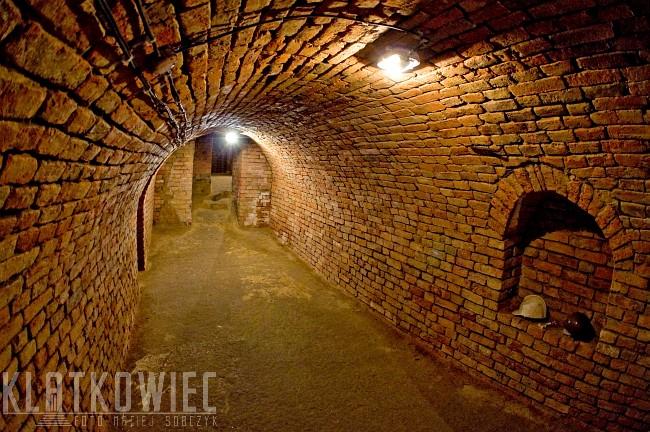 Jarosław: podziemna trasa turystyczna, czyli historia kamienic od spodu