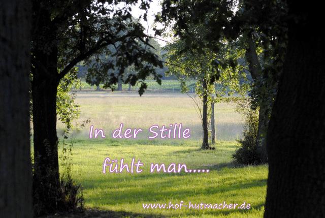 Hof Hutmacher - Mut, Intuition, Heilung: Ich habe Angst um