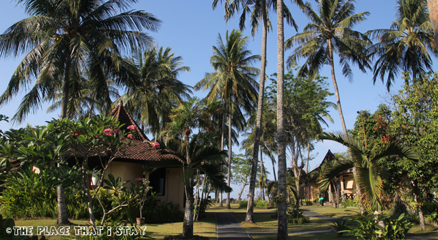 Mascot Beach Hotel (Senggigi, Lombok)