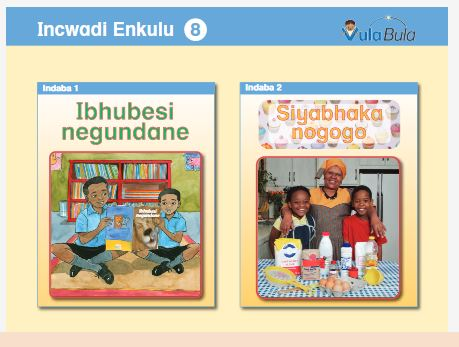 Foundation Phase African Langauge Digital Readers and other material