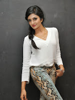 Vimala Raman Sizzling at Kavvintha Audio-cover-photo