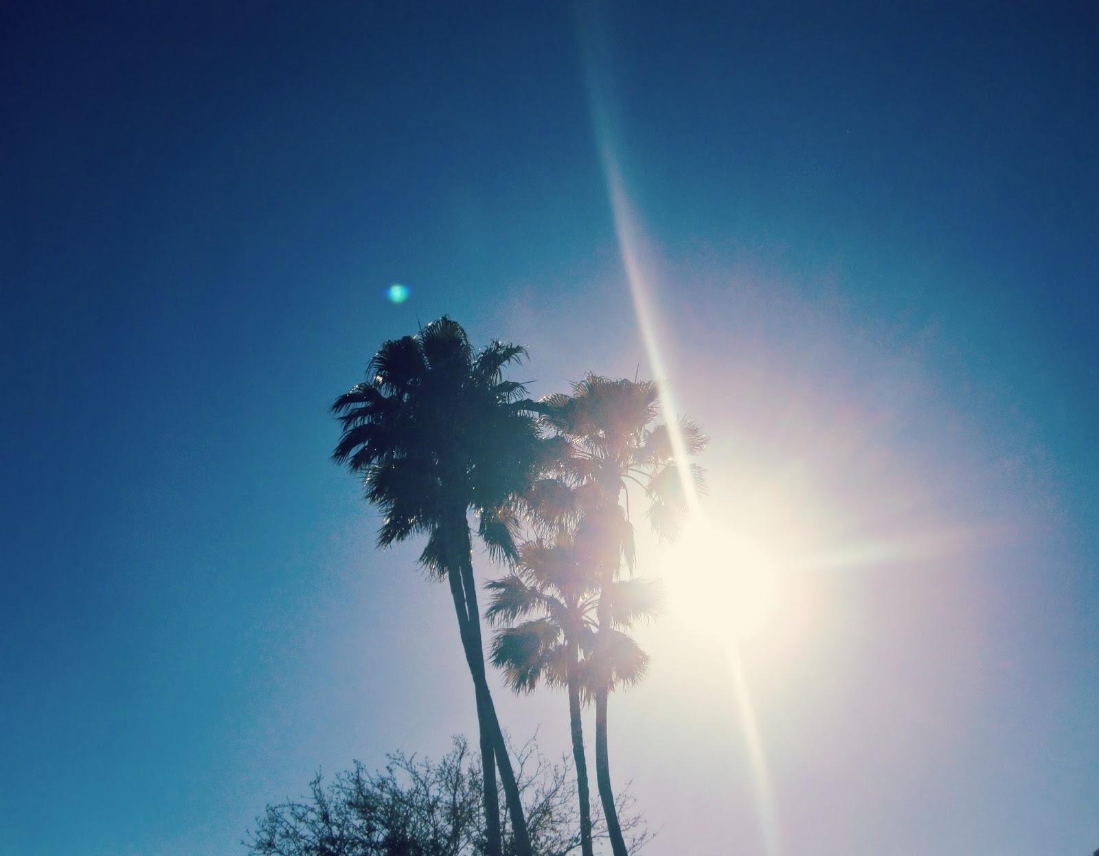 Spring Break In Florida, lens flare, florida, spring break 2014