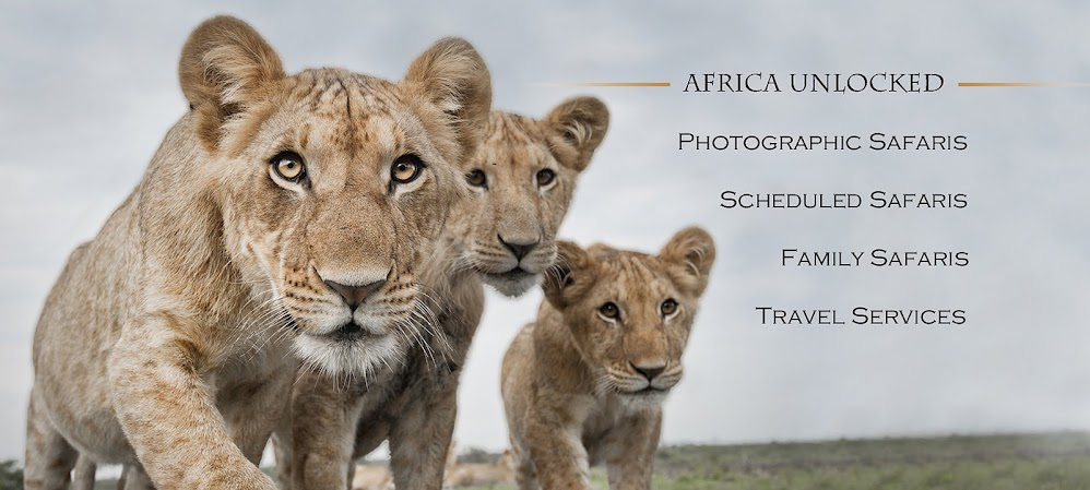 Africa Unlocked - Private Guided Safaris