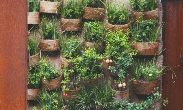 grade de jardim vertical : grade de jardim vertical:Utilizando fibra de coco, uma alternativa mais sustentável ao xaxim.