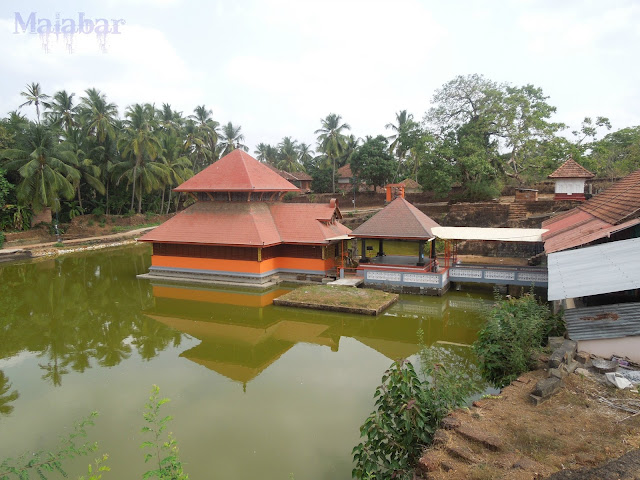 crocodile kerala temple