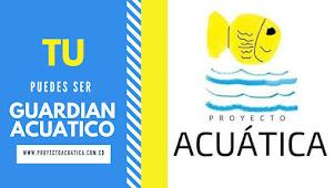 Proyecto  Acuática
