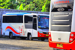 Bus Ardana