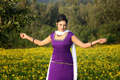 Hari priya photo shoot among yellow folwers-thumbnail-19