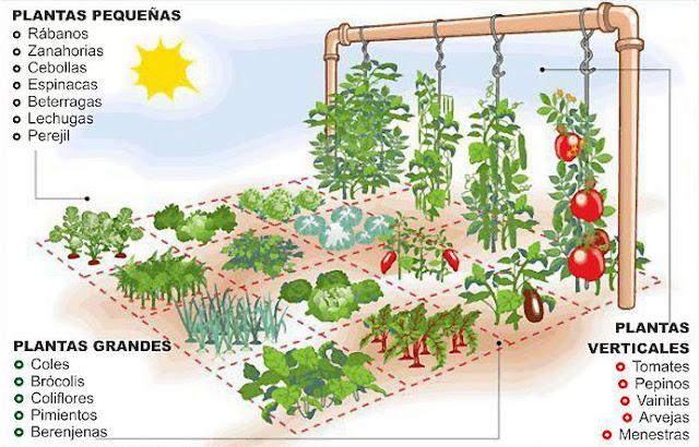 fotos jardim quadrado:Horta doméstica com PVC ~ ARQUITETANDO IDEIAS