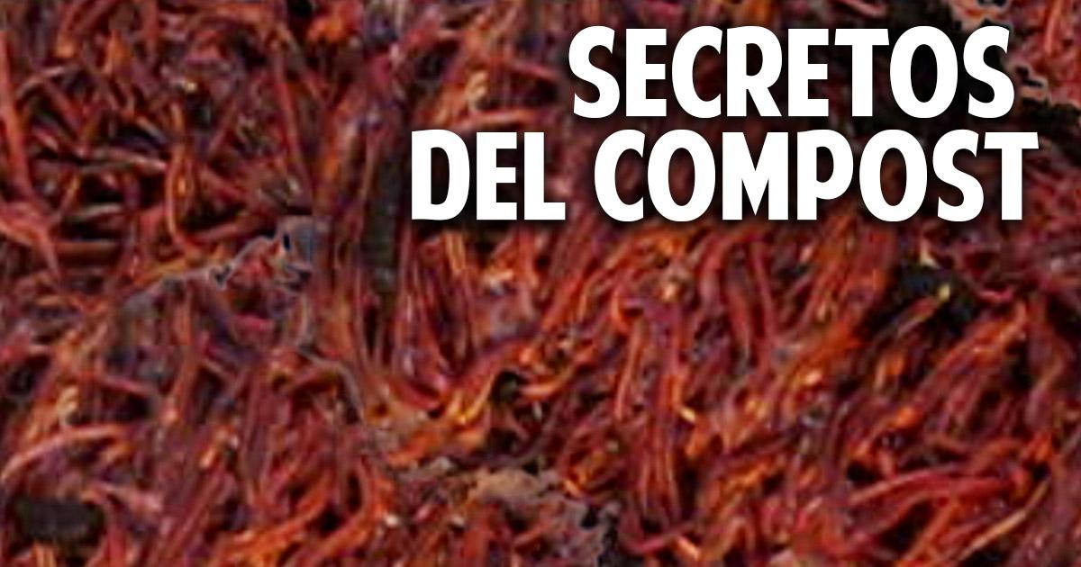 10 secretos que debes conocer sobre compost y humus de lombriz - 1