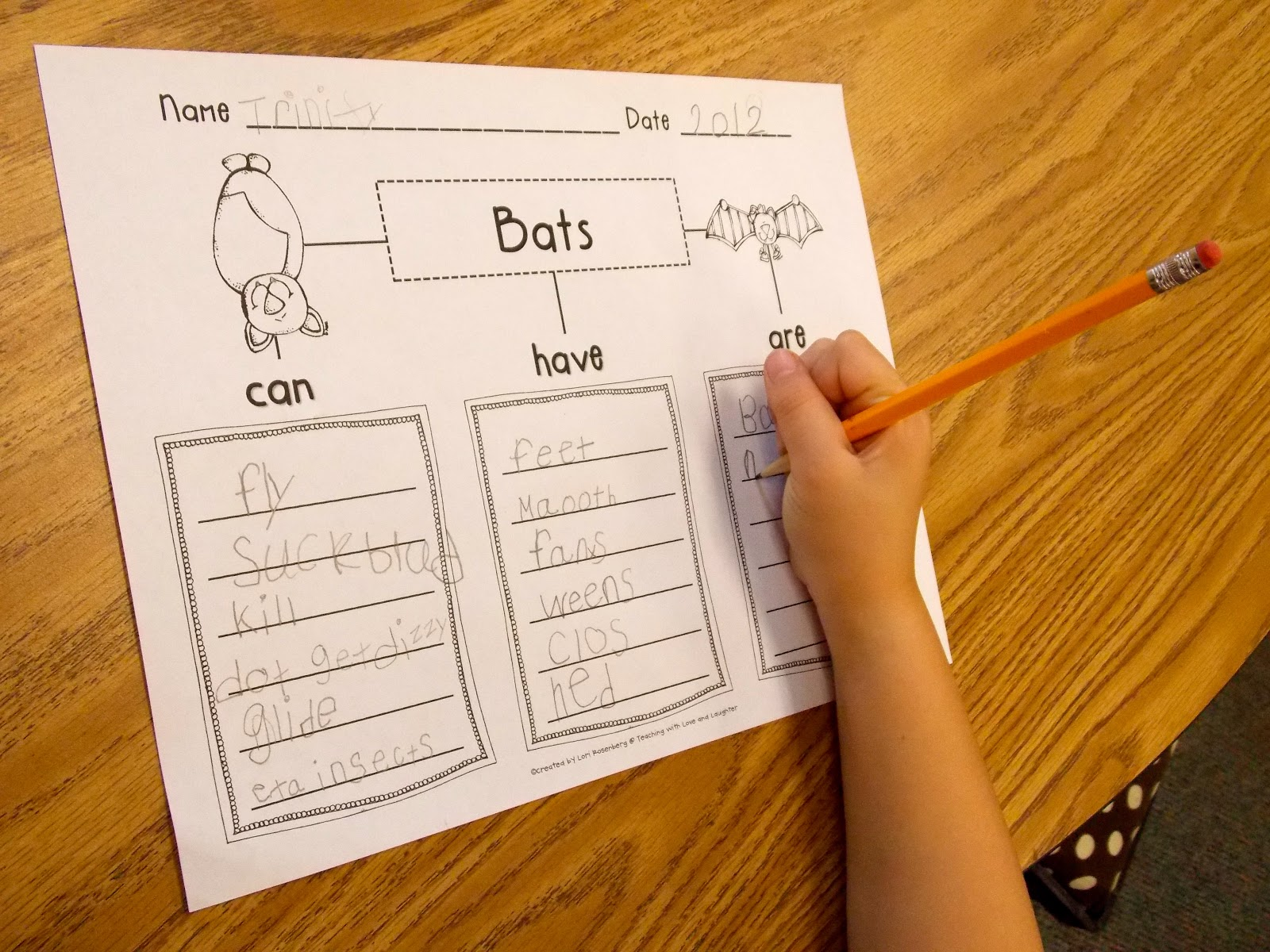 a day in first grade bat week has started