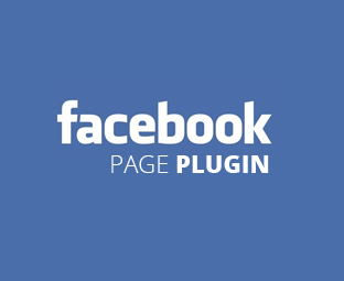 How to Customize the Facebook Page Plugin for Websites