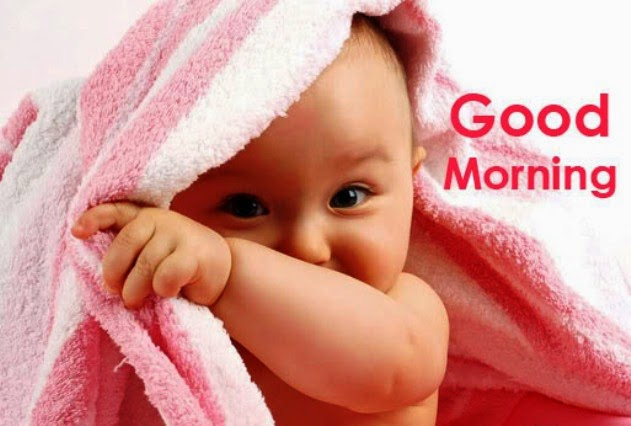 Good Morning Ji : Good morning pictures and messages beautiful