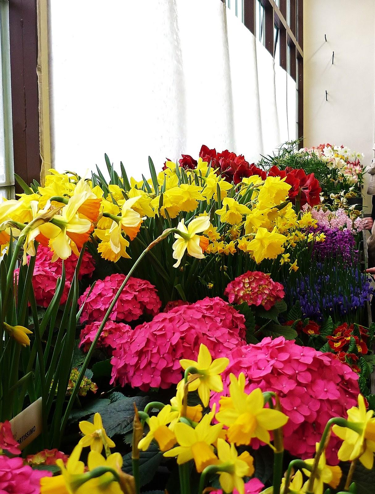 Картинки наступление весны цветы