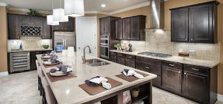Divosta model home Sandhill Preserve