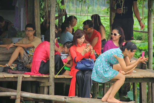 Vietnam girls wearing slim among lotus lake