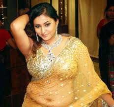 Namitha-hot-in-saree-south-actress-10