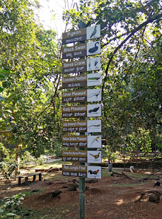 bvkmohan.blogspot.in,bvkmohan,nye 2016,wanderlust,bike life,touring,karanji kere,aviary